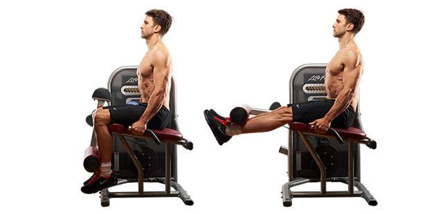 seated knee raise