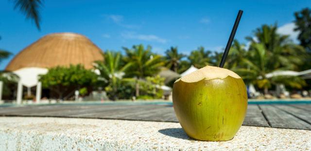 coconut water summer