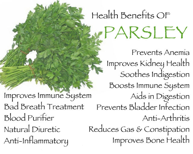 7 Health Benefits Of Parsley You Might Not Know About