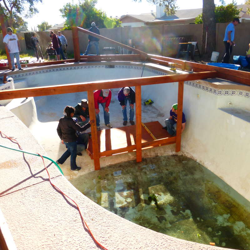 These folks converted their swimming pool into a self for Self sustaining pool
