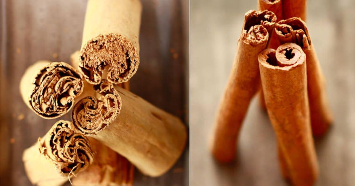 Cinnamon's Dirty Little Secret REVEALED
