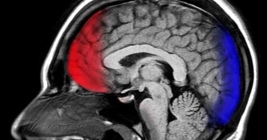 gratitude brain happy